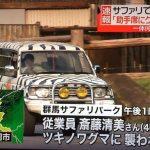 斎藤清美さんが熊に襲われ死亡の群馬サファリパーク!過去の2人死亡事件も