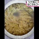 はごろもフーズがゴキブリ混入も回収・公表せず!Gーチキン誕生か?